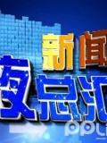 """新闻夜总汇-20130126-调皮海豹游客包里""""偷""""衣,被摄影师抓现行"""